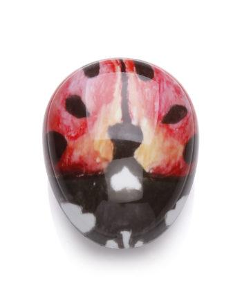 PEBBLE BUG – Ladybird 1 Overhead View